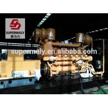 1250kva Générateur diesel prix à vendre par marque Jichai