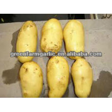 80-100g hot sale fresh potato from china