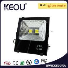 Projecteur de l'usine 10W 30W 50W 100W IP66 COB de Guangzhou