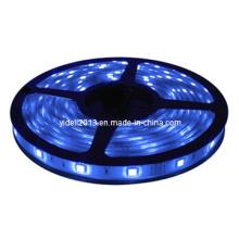 Nuevo 3528 SMD Azul Impermeable 12V 5m 300 LED Tira de luz flexible
