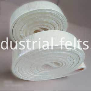 Polyester Endless Belt