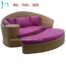Patio Leisure Lounge Garden Outdoor Furniture Rattan Sunbed (FL015)