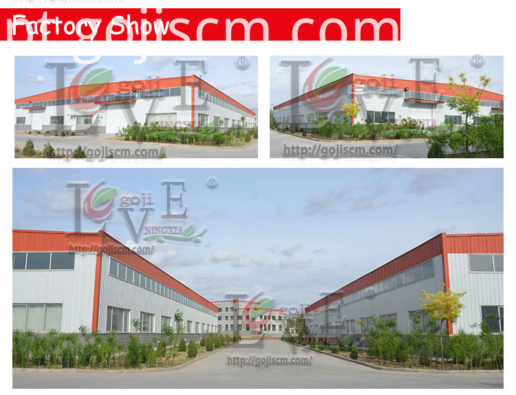 Nutrious Goji Berry factory