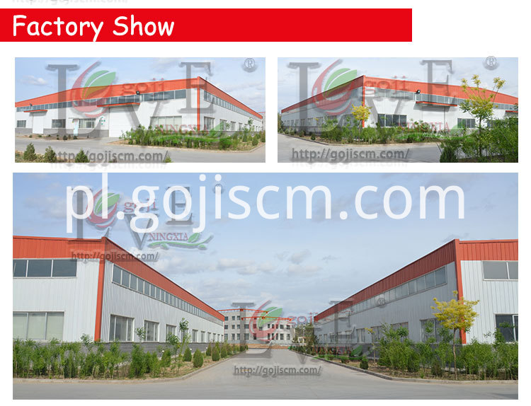 Dried Goji Powder factory show