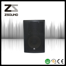 Zsound P12 12 pouces Professional Jazz Music Loudspeaker Consultant