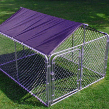 Chain Link Galvanizado Dog Run