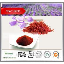 Extrato de semente de açafrão 100% natural, extrato de açafrão em pó, safranal 0,1% ~ 0,4%