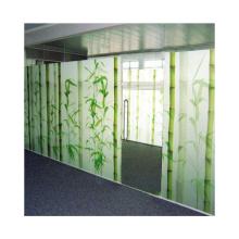 Excellent customer design digital printing glass tempered art glass for partition wall