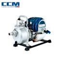 Высокое качество Профессиональный одобренный CE сад Водяной насос