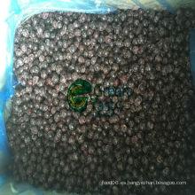 Congelado de alta calidad IQF Blackcurrant salvaje