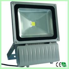 Inondation de LED haute luminosité 80W lumières Bridgelux Chips CE RoHS 2 ans de garantie