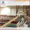 conception de projet clé en main cuisinière de poulet cages de poulet hangar en poulet en acier à faible coût pour la ferme de poule Kenya
