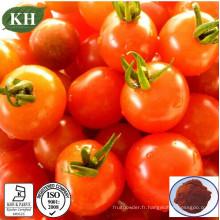 100% Extrait naturel de tomate en poudre Lycopène 5% ~ 98% pour additif alimentaire