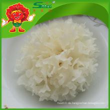 Chinesisch Lieferant von Pilzen getrockneten Schnee weißen Pilz