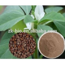 Extrato de semente de feno-grego 100% natural