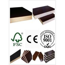 15mm Shutter Plywood with Poplar Core WBP Glue Black Film First Grade