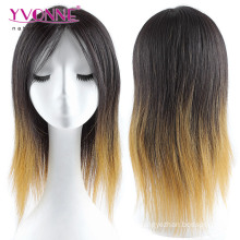 Ombre Color Brazilian Full Lace Wig Straight Hair Wig