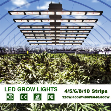 ETL Approved LED Grow Light Bars