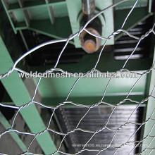 Anping hexagonal red de alambre (fabricación y proveedor)