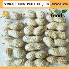 Best Ground Peanuts Inshell New Crop