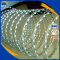 Concertina galvanized razor barbed wire for sale