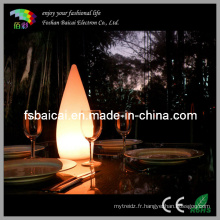 Lumière décorative LED (BCD-341L, BCD-342L)