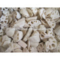 IQF frozen fresh lotus root vegetable