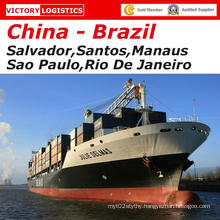 Container Shipping Logistics Service From China to Brazil (Logistics)