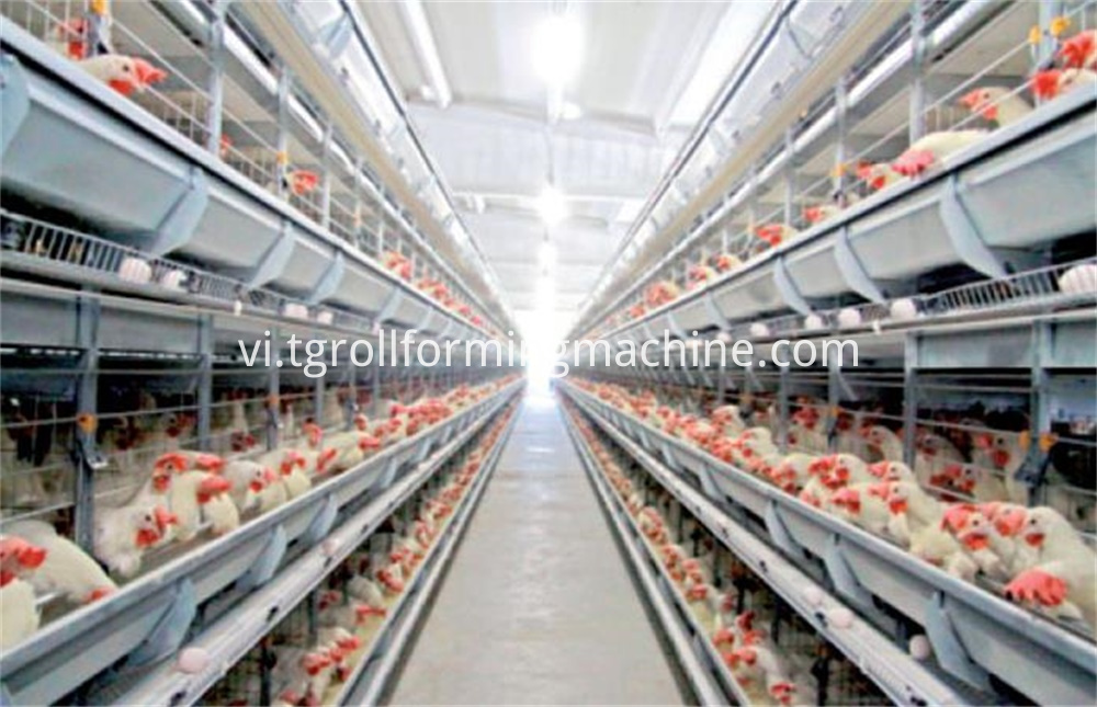 Animal Husbandry Profile Roll Forming Production Line