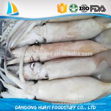 seafrozen whole round frozen baby loligo squid