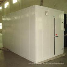 Alta Qualidade Container Freezer Room