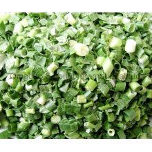 Scallon vert séché au gel; Scallion vert déshydraté; Fd Scallion