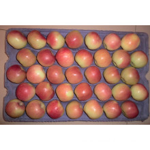 2015 Fresh Gala Apple by Shandong Boren