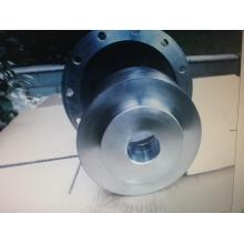 Magnetic Coupling For The Magnetic Pump