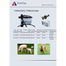 Veterinary Videoscope