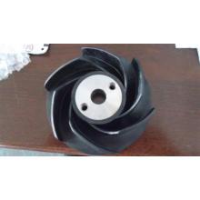 Pompe à pompe à eau Cummins Nta855 (3000888)