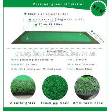 2015 El más nuevo producto Golf personal que pone la simulación verde