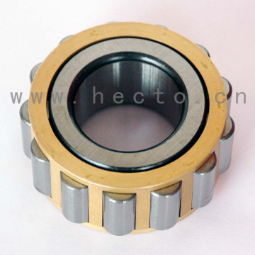 Cylindrical Roller Bearing for Zf 0750 118 019 Rn606m