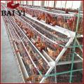 Cage de poulets de volaille et cage d'animaux