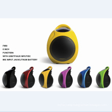 "5.5""Mini Rechargeable Speaker F905"
