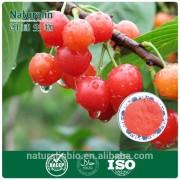 25% Vitamin C Natural Acerola Cherry Extract