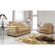 Electric Recliner Sofa USA L&P Mechanism Sofa Down Sofa (C520B#)