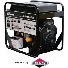 Популярный генератор Цена 13kw (EF13000)