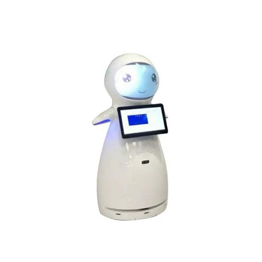 Welcome Interactive Talking Company Robots
