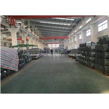 A tubulação de aço galvanizada / galvanizou o tubo de aço / galvanizou a canalização / Zn revestido-81