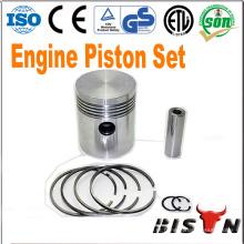 BISON China Zhejiang OEM com fabricante Diesel Engine Piston Ring