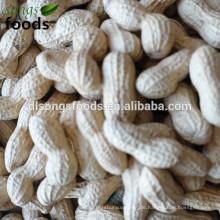 Kandierte Erdnüsse in Alibaba