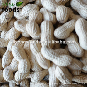 Candied peanuts in alibaba