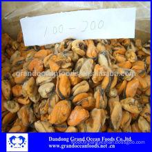 Frozen boiled blue mussel meat