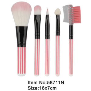 5pcs pink plastic handle nylon hair makeup brush portable kit
